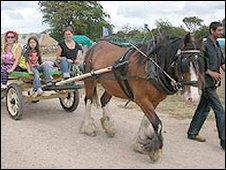 Horsedrawn cart at a previous Big Green Gathering