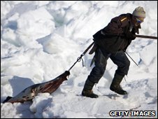 A seal hunter returns with pelts after braving the ice off the coast of Pointe-aux-Loups in the Magdalen Islands, Canada