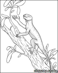 Artist's sketch of Suminia