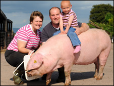 Catherine Nicholas, her parents Rachel and Mark, and Harmony the pig