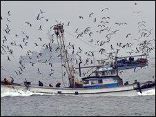 South Korean fishing boat passes naval vessel. File photo - 7 June 2009