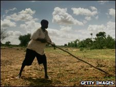 Man works on land in Niger