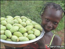 Young child carrying shea fruit (Image: Miranda Spitteler/Tree Aid)