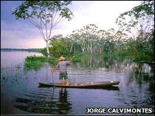An Amazonian fisherman