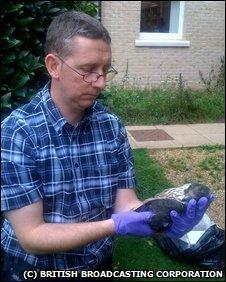 RSPB inspector Mark Thomas