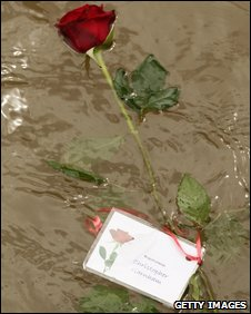 Red rose floating on the water