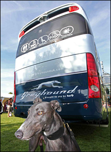 UK version of a Greyhound bus, with a greyhound dog