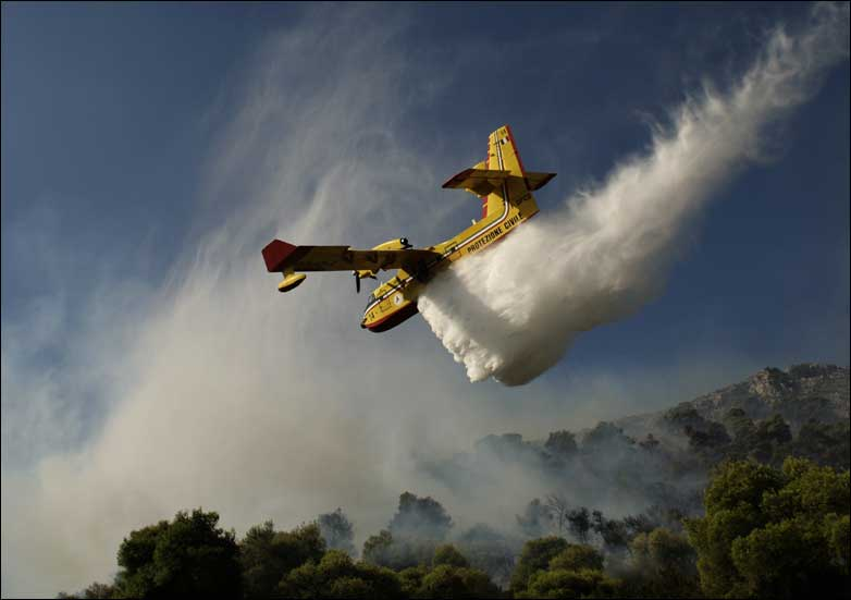 A plane drops water on a burning forest, in Nea Makri, near Athens