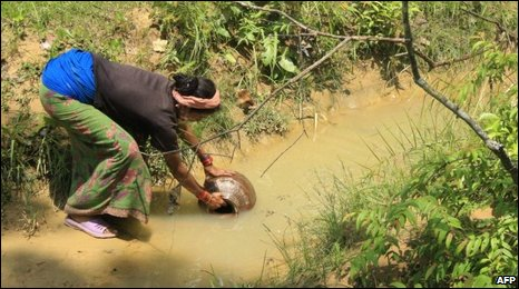 Nepalese villager Naina Shahi fetches water from a stream in the village of Bhattegaun on August 21, 2009.