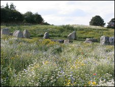 Stone circle in meadow. Image courtesy of Scarborough in Bloom