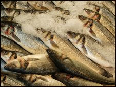 Bass can fetch a high price in the hotel and restaurant industry