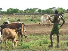 A man in souther Sudan guarding his cattle with a gun