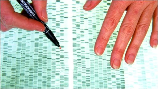 Person checking DNA profile
