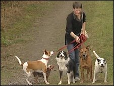 Sara Starkey with her five dogs