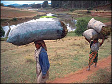 Women carrying charcoal sacks