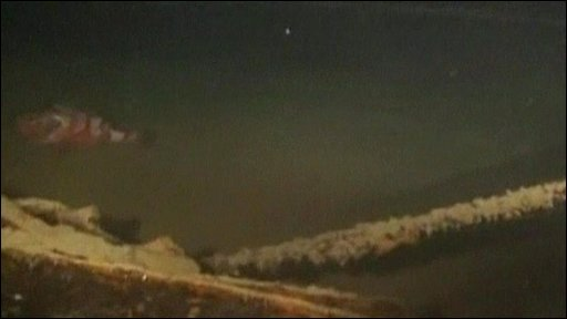 Underwater footage of the sunken ship that could contain nuclear waste.