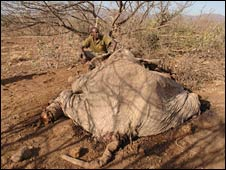 David Daballen with a poached elephant