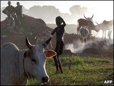 Lou Nuer children and cattle, file image