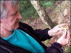 Patrick Crowley holding some fungi