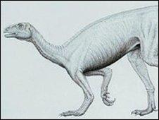 "Thecodontosaurus, the ""Bristol Dinosaur"""