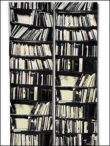 Atelier Abigail Ahern's Bookcase wallpaper