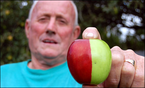 Ken Morrish and apple