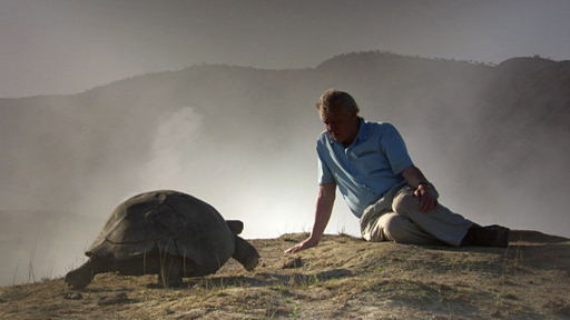 Sir David Attenborough presents his selection of 50 of his most memorable natural history moments.