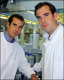 Chris and Alex van Tulleken
