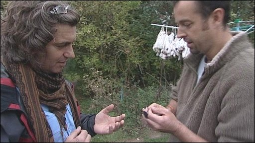Martin Hughes-Games goes bird ringing with the BTO
