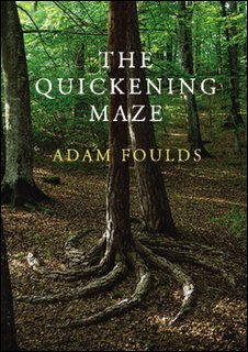 Adam Foulds - The Quickenening Maze