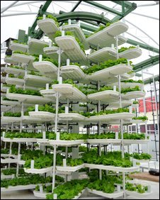 vertical crop growing system