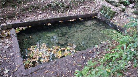 St Dyfnog's well