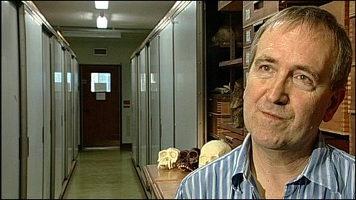 Natural History museum's Professor Chris Stringer
