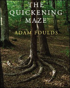 Cover for The Quickening Maze