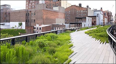The High Line park with buildings in the distance