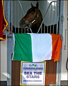Sea The Stars is welcomed home to his stable