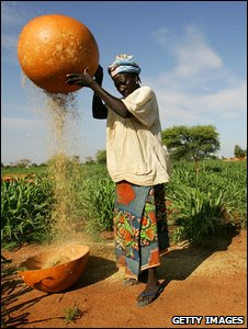 Farmer in drought-prone Niger