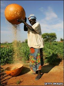 Farmer in drought-prone Niger