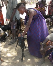 A Turkana woman with goat