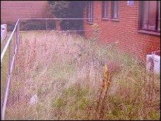 Site before work on the garden began