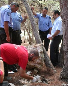 Dead birds being discovered in Mizieb woodland, pic courtesy of BirdLife Malta