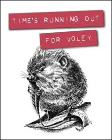 Gloucestershire Wildlife Trust water vole campaign