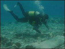 Diver at site of Pavlopetri