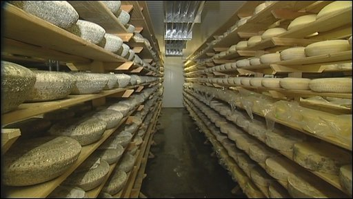 Cheeses at High Weald Dairy