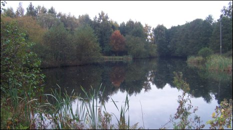 Lake at Alne nature reserve