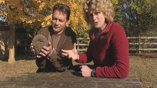 Chris Packham and Kate Humble at St Tiggywinkles
