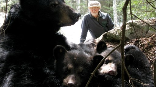 Prof Rogers with bears