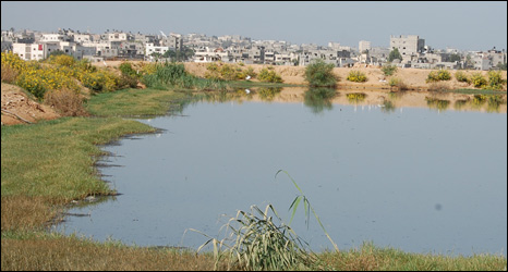 Sewage lagoon at Beit Lahia treatment plant