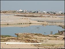 Drained lagoon, Beit Lahia