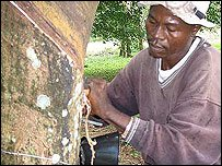 Man tapping rubber, generic photo